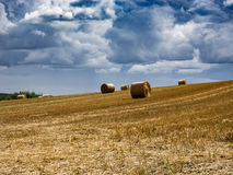 Summer Field with Hay Bales. under storm clouds.Agriculture Conc. Summer Field with Hay Bales. under storm clouds. Agriculture Concept Stock Photos
