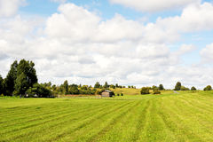 Summer field with house. Summer in the island Kizhi, Karelia Royalty Free Stock Photos