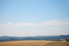 Summer field in Hungary Royalty Free Stock Images