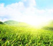 Summer field and mountains Stock Photography