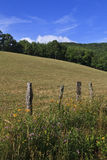 Summer Field in the Mountains. Split rail fence with wildflowers beside a field in the background royalty free stock image