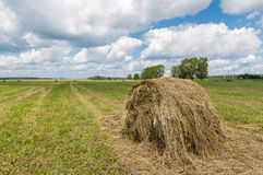 Summer field with mowed grass and haystack, Royalty Free Stock Photos