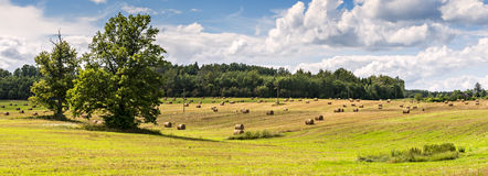 Summer field with rolls of haystacks on hilly horizon. And cloudy sky, Latvia stock images