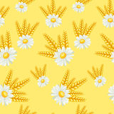 Summer field seamless pattern Royalty Free Stock Photography
