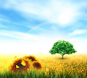 Summer, Field, Sky, Sun, Rainbow, Tree, Grass, Sunflowers. Summer Landscape With Field, Sky, Sun, Rainbow, Tree, Grass, Sunflowers And Butterflies Royalty Free Stock Image