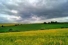 Summer field before storm Royalty Free Stock Photo