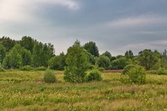 Summer field under gloomy sky. Summer field with river under overcast sky with clouds Stock Photography