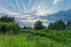 Summer field under gloomy sky. Summer field under overcast sky with clouds Stock Image