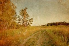 Summer field under sky in grunge style Stock Photos