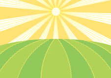Summer field.Vector nature landscape. With sun Royalty Free Stock Photos