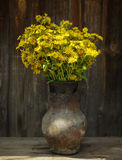 Summer field yellow flowers in an old jug on a wooden old background Stock Photography
