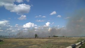Accelerated shooting as the grass burns in the summer field. Summer fire on a sunny afternoon stock footage