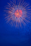 Summer Fireworks-1 Royalty Free Stock Image