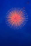 Summer Fireworks-3 Stock Photography
