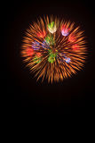 Summer Fireworks-6 Royalty Free Stock Photo