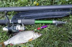 Summer fishing on the lake with a fishing rod. Morning catch of fish roach on a fishing rod with a float Stock Photo