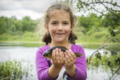 In the summer on a fishing little girl caught a large carp. Stock Images