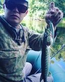 Summer fishing for pike on the river sula. Summer has come and the pike has come Stock Photography