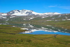 Summer Fjell Landscape in Northern Norway Royalty Free Stock Photos