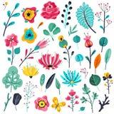 Summer flat flowers. Floral garden flowering plants, nature floral elements. Spring botanical vector set royalty free illustration
