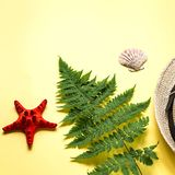 Flat lay of fern branch and some beach stuff on yellow,square. Summer flat lay of a fern branch and some beach stuff on yellow paper background royalty free stock images