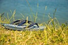 Summer Flip Flops on Grass Beach Stock Photos