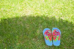 Summer flip flops on the grass. Summer flip flops in the shadow on the green grass stock image