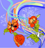 Summer floral background Royalty Free Stock Photography