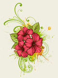 Summer floral background Stock Image