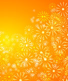 Summer floral background. Royalty Free Stock Images