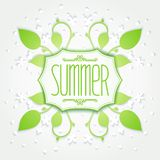 Summer floral badge Royalty Free Stock Photography
