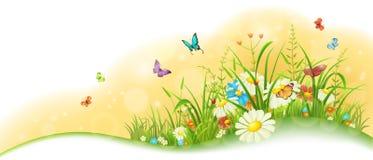 Summer floral banner Stock Photos