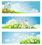 Summer floral banners Royalty Free Stock Image
