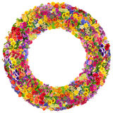 Summer floral circles  isolated Royalty Free Stock Image