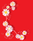 Summer floral Stock Image