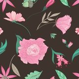Summer Floral Pattern on Brown Background Stock Image