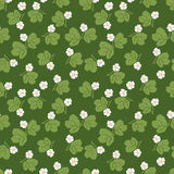 Summer floral seamless vector pattern Royalty Free Stock Images