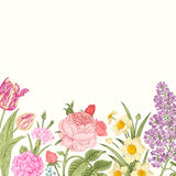Summer floral vintage vector background. Stock Photos