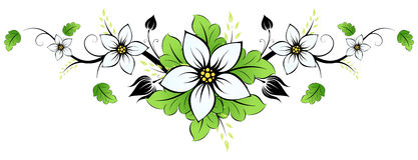 Summer flower Stock Image
