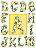 Summer flower alphabet. Letters A - M Stock Images