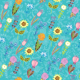 Summer flower background Stock Image