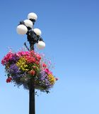 Summer flower baskets Royalty Free Stock Images