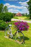 Summer flower bicycle Royalty Free Stock Images