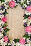 Summer Flower Border Royalty Free Stock Photo