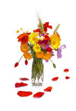 Summer flower bouquet and poppy leaf petals, white background. Summer flower bouquet in vase and poppy leaf petals,isolated Royalty Free Stock Photo