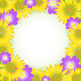 Summer flower frame. Vector illustration. Royalty Free Stock Image