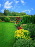 Summer flower garden. With green bushes and flowers Stock Photos