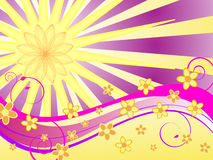 Summer flower power Royalty Free Stock Images