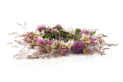 Summer flower wreath Royalty Free Stock Images
