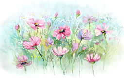 Summer flowers. Pink summer flowers (Cbm painting Royalty Free Stock Images